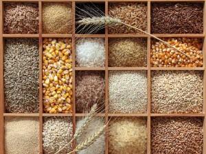 21-whole-grains-210812-300x225