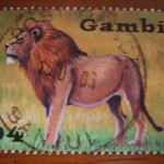 leon1-150x150